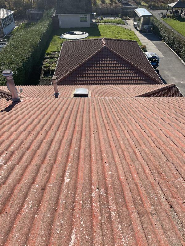 Roof Soft Washing